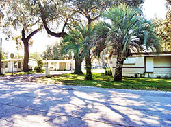 Andys Travel Trailer RV Park Is Zephyrhills Floridas And Mobile Home Community Of